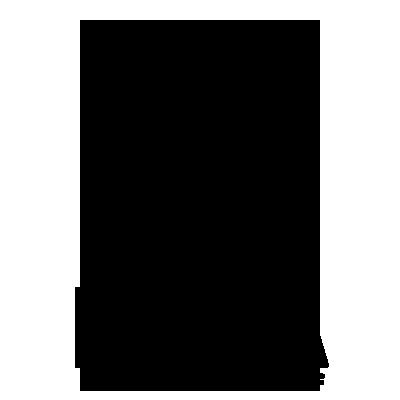 Lunasurf-Comapny-Logo-google